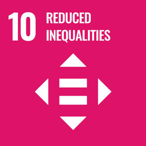 UN Strategic Goal 10