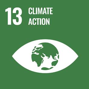 UN Strategic Goal 13