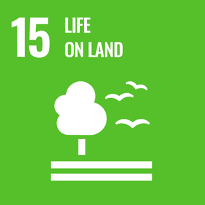UN Strategic Goal 15