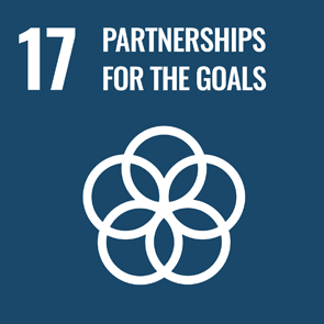 UN Strategic Goal 17